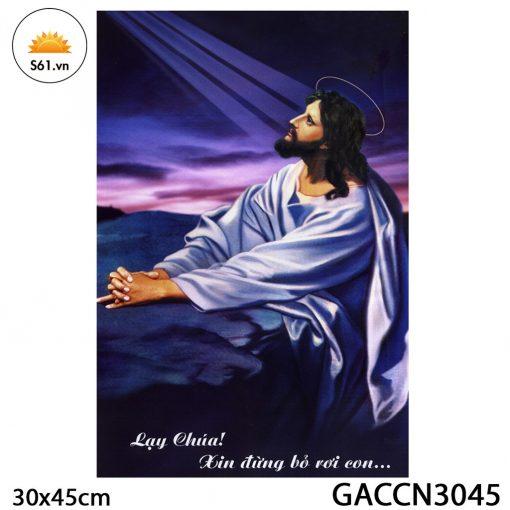 Tranh Chúa Cầu Nguyện Gỗ MDF 30x45cm