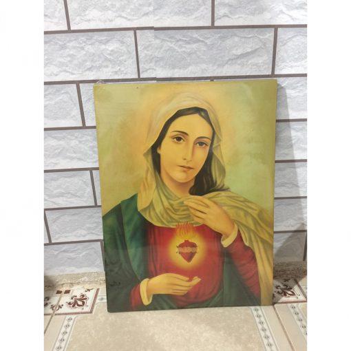 Tranh Vẽ Tay Đức Mẹ 40x50 (3)
